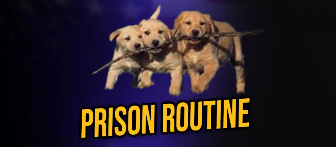 prison routine