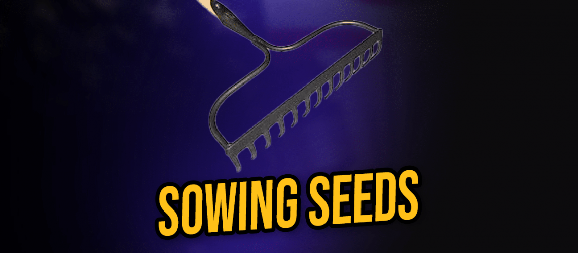 sowing seeds for future